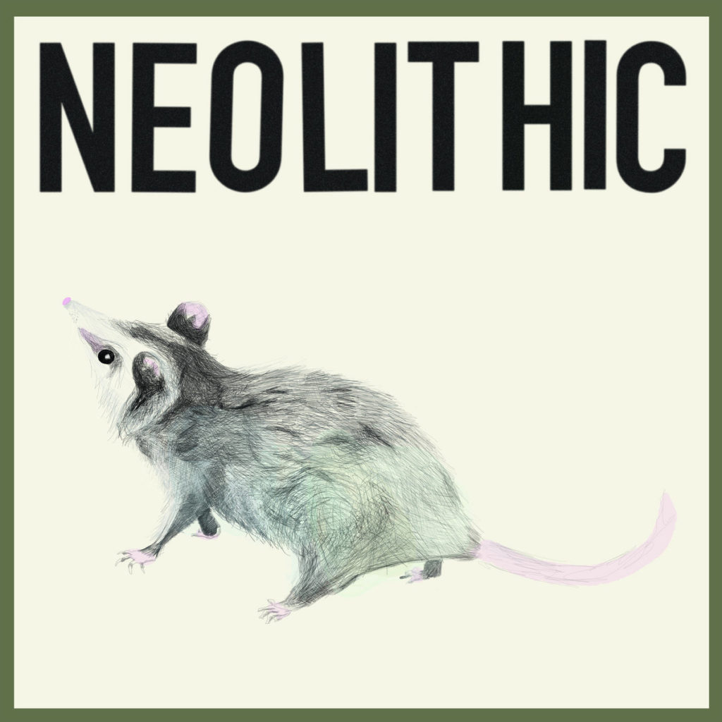 """The album cover for """"Neolithic"""" by Ben Abrahamson."""